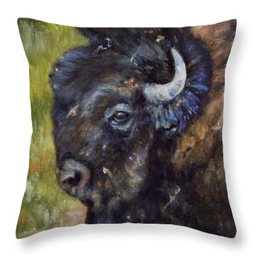 Bison Study 5 Throw Pillow