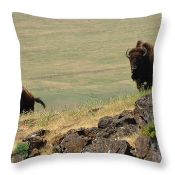 Bison Watch Throw Pillow
