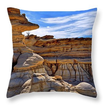 Throw Pillow featuring the photograph Bisti Badlands Formations - New Mexico - Landscape by Jason Politte