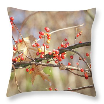 Bittersweet And Oak Throw Pillow by Michael Peychich