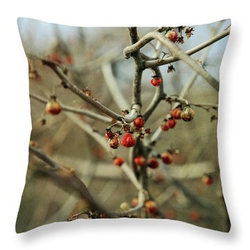 Bittersweet In Spring Throw Pillow