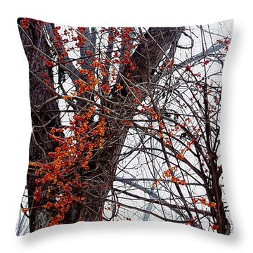 Bittersweet Throw Pillow by Joy Nichols