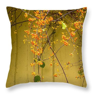 Bittersweet Vine Throw Pillow by Tom Singleton