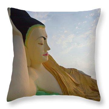 Biurma_d1836 Throw Pillow by Craig Lovell