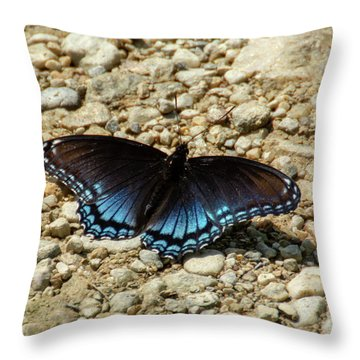Black And Blue Monarch Butterfly Throw Pillow