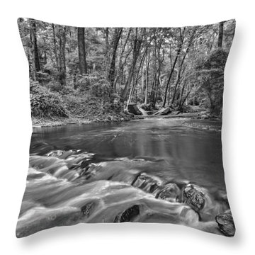 Black And White 36 Throw Pillow