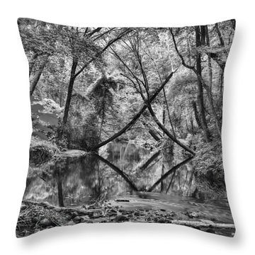 Black And White 40 Throw Pillow
