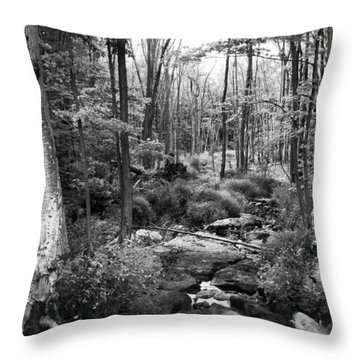 Black And White Babbling Brook Throw Pillow