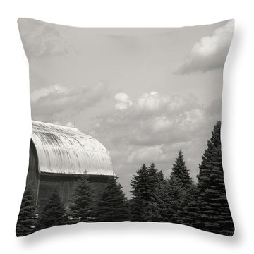 Throw Pillow featuring the photograph Black And White Barn by Joann Copeland-Paul