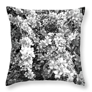 Throw Pillow featuring the photograph Black And White Beautiful Blossoms by Aimee L Maher Photography and Art Visit ALMGallerydotcom