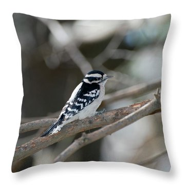 Black And White Bird Throw Pillow