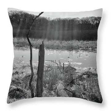 Black And White Bog Throw Pillow