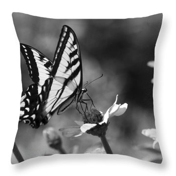 Black And White Butterfly On Flower Throw Pillow by Jim And Emily Bush