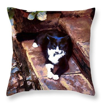Black And White Cat Resting Regally Throw Pillow