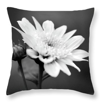 Throw Pillow featuring the photograph Black And White Coreopsis Flower by Christina Rollo