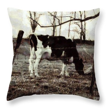 Throw Pillow featuring the photograph Black And White - Cow In Pasture - Vintage by Janine Riley