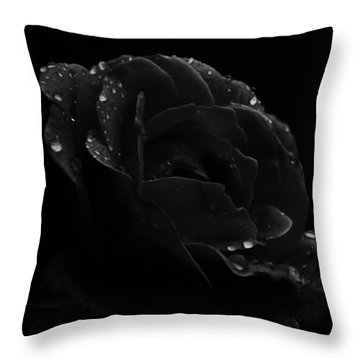 Throw Pillow featuring the photograph Black And White Flower Fifteen by Kevin Blackburn
