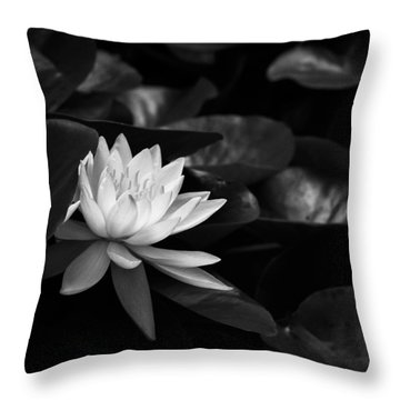 Throw Pillow featuring the photograph Black And White Flower Nine by Kevin Blackburn