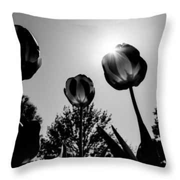 Throw Pillow featuring the photograph Black And White Flower Thirty One by Kevin Blackburn