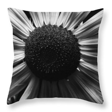 Throw Pillow featuring the photograph Black And White Flower Twelve by Kevin Blackburn