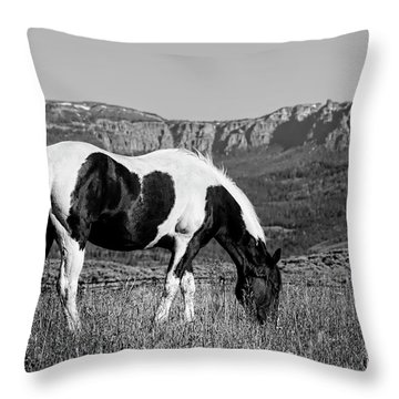 Black And White Horse Grazing In Wyoming In Black And White  Throw Pillow