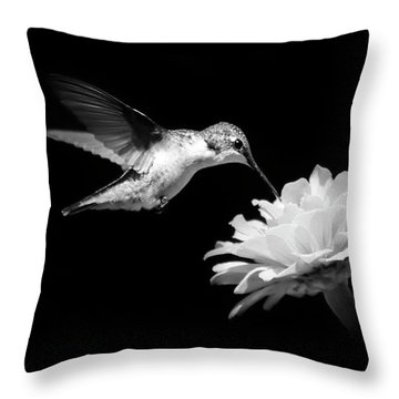Black And White Hummingbird And Flower Throw Pillow by Christina Rollo