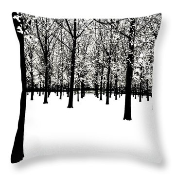 Throw Pillow featuring the photograph Black And White by Jim Dollar