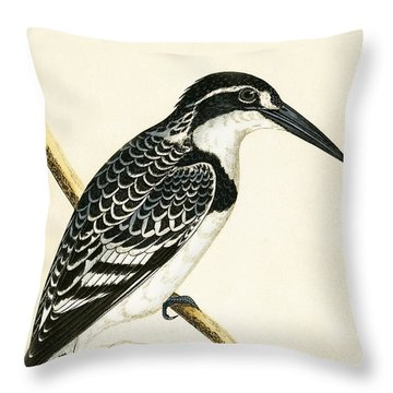 Black And White Kingfisher Throw Pillow by English School