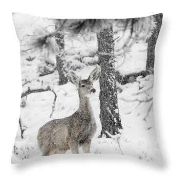 Black And White Mule Deer In Heavy Snowfall Throw Pillow