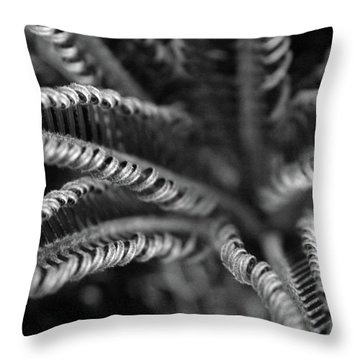 Black And White Palm Abstract 3624 Bw_2 Throw Pillow
