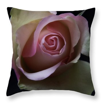Black And White Pink Flowers Roses Macro Photography Art Work Throw Pillow