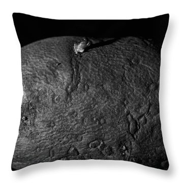 Black And White Potato Throw Pillow by Dan Sproul