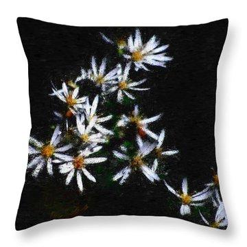 Black And White Study II Throw Pillow by David Lane