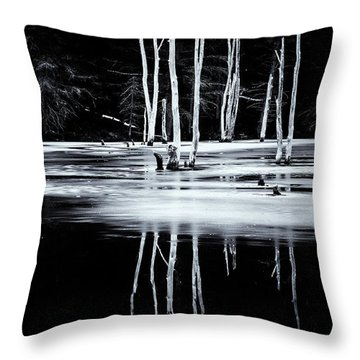 Black And White Winter Thaw Relections Throw Pillow by Tom Singleton