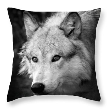 Black And White Wolf Throw Pillow by Steve McKinzie