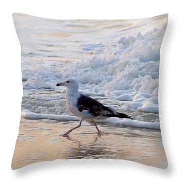 Black-backed Gull Throw Pillow