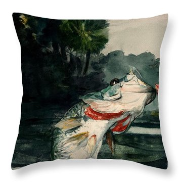 Black Bass Throw Pillow by Pg Reproductions