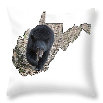 Black Bear Coming Close Throw Pillow