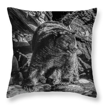 Black Bear Creekside Throw Pillow