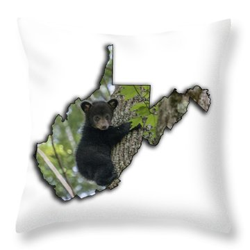 Black Bear Cub Climbing Down A Tree Throw Pillow