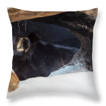 Throw Pillow featuring the digital art Black Bear In Its Winter Den by Chris Flees