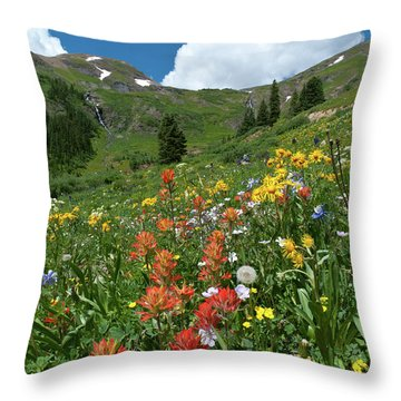 Throw Pillow featuring the photograph Black Bear Pass Landscape by Cascade Colors
