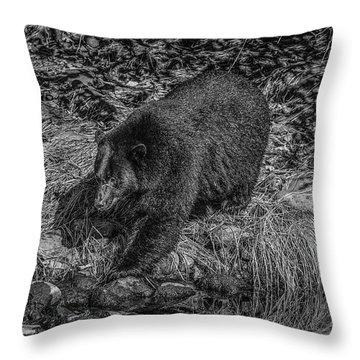 Black Bear Salmon Seeker Throw Pillow