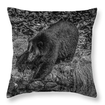 Black Bear Salmon Seeker Throw Pillow