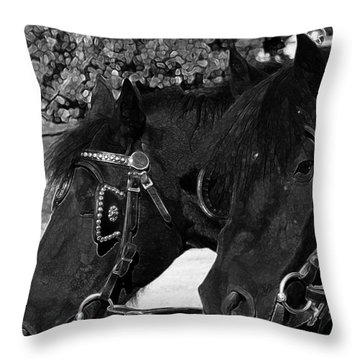 Throw Pillow featuring the photograph Black Beauties by Stuart Turnbull