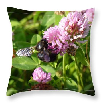 Black Bee On Small Purple Flower Throw Pillow by Jean Bernard Roussilhe
