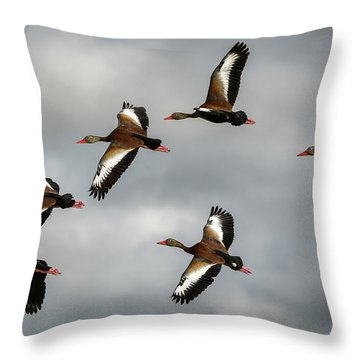Black Bellied Whistling Ducks Throw Pillow