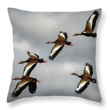 Black Bellied Whistling Ducks Throw Pillow