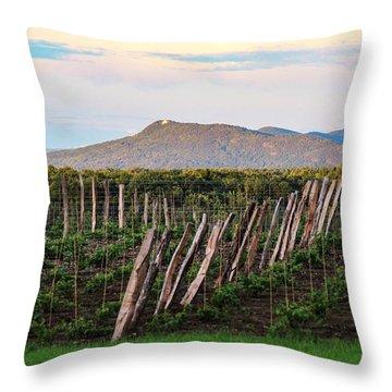 Black Birch Vineyard And Summit House View Throw Pillow