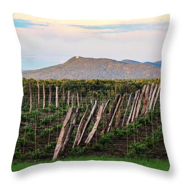 Black Birch Vineyard And Summit House View Throw Pillow